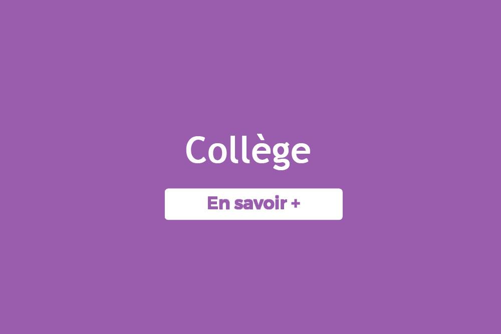 Solution Réussite Annecy - cours particulier,  soutien scolaire, cours sur-mesure au Collège